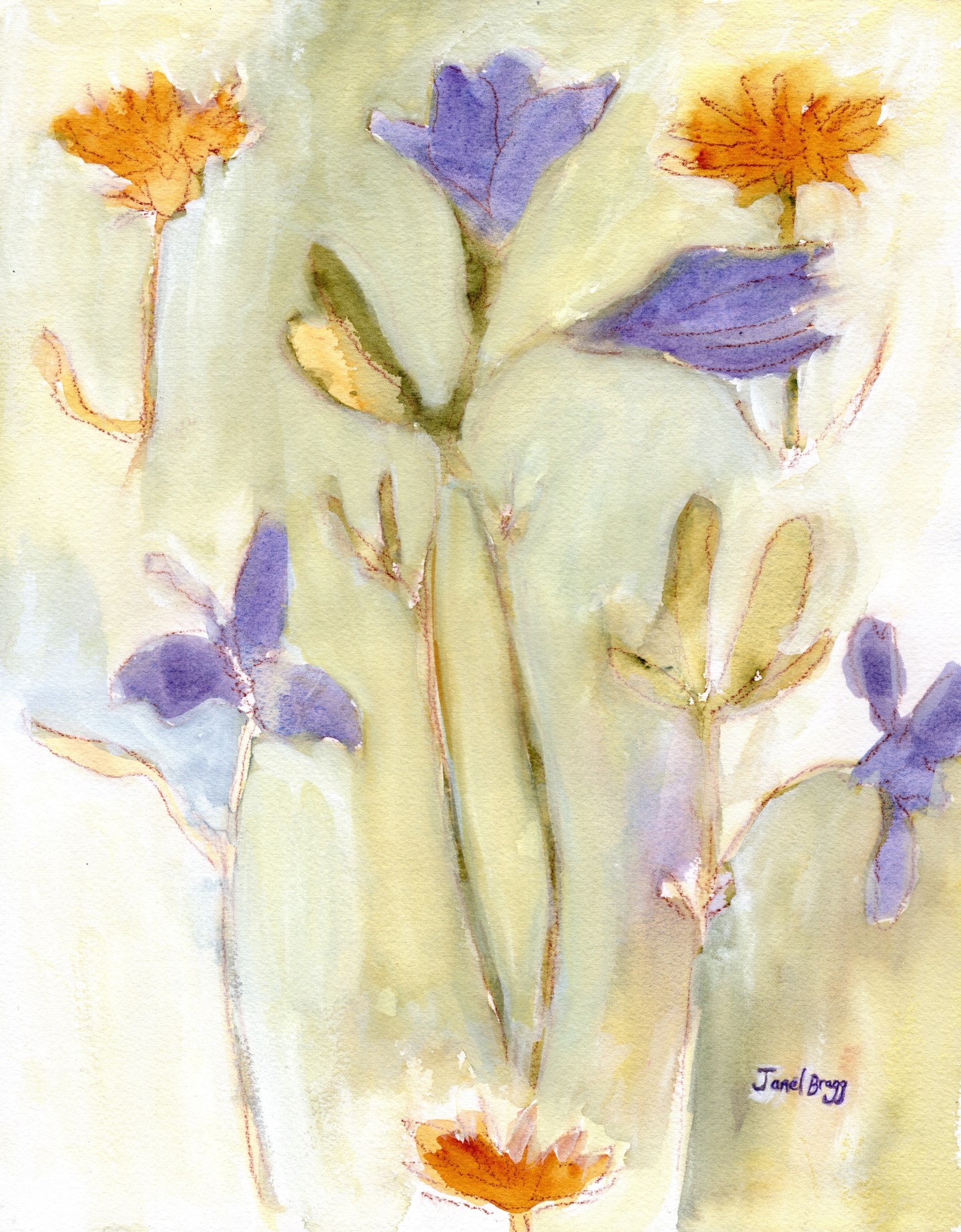 Janel Bragg - Periwinkle and Dandelion