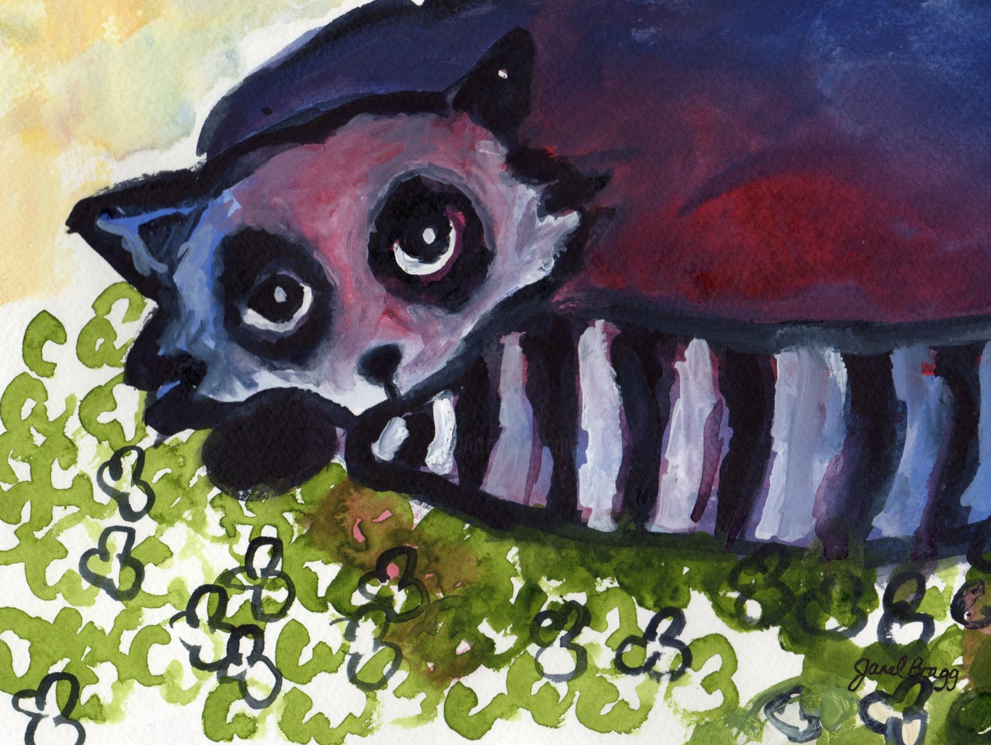 Janel Bragg - Raccoon in Clover Patch