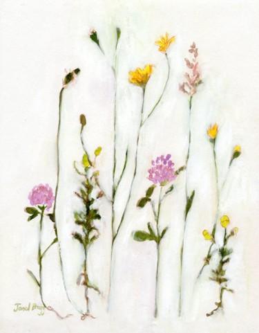 Clover, Wild Chamomile and Dandelion 1.5