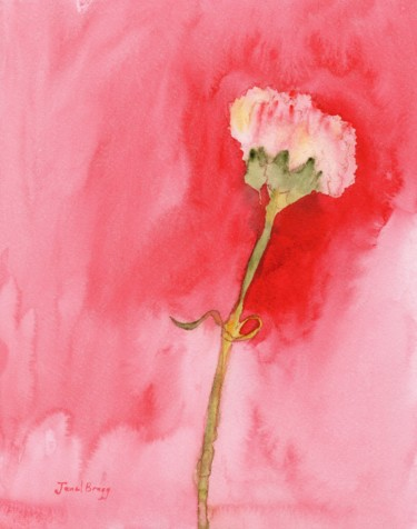 My Mammogram Carnation