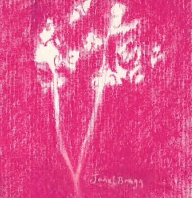 Baby's Breath in Rose Purple II