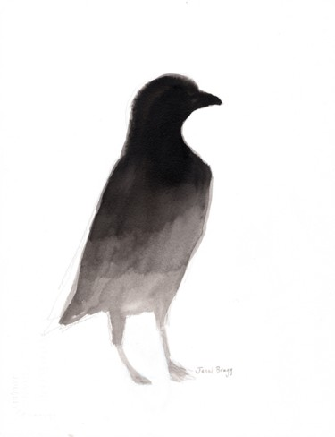 Raven from Anacortes in Ink