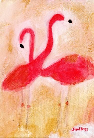 Flamingos at Woodland Park Zoo 2.5