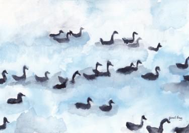 Wild Geese in Fidalgo Bay