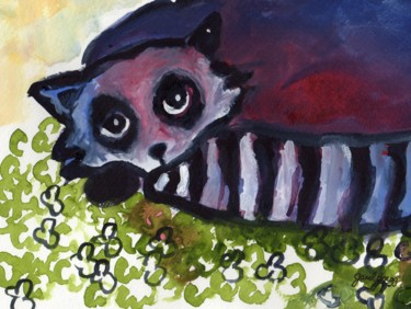 Raccoon in Clover Patch